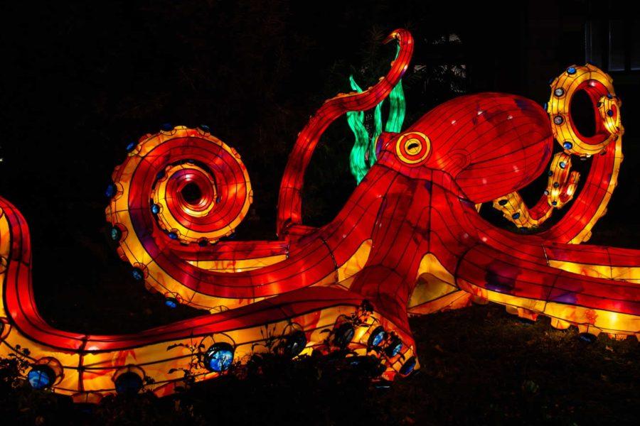 Que vaut vraiment l'expo Océan en voie d'illumination ?