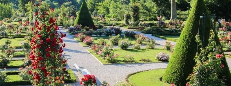 jardin paris parc Bagatelle