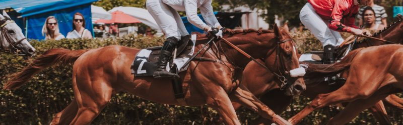 vivre à Paris 16 équitation